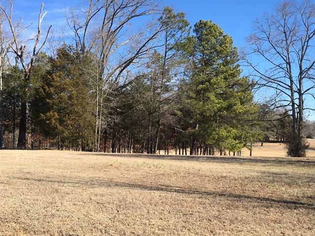 114 Verde Ct, Greenwood, SC 29649 (MLS #115106) :: Premier Properties Real Estate