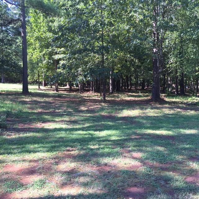 329 Compass Point, Ninety Six, SC 29666 (MLS #115230) :: Premier Properties Real Estate