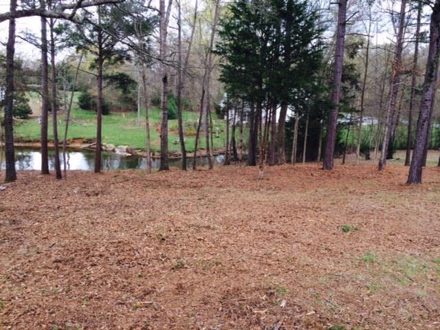 Lot 172 Swing About, Greenwood, SC 29649 (MLS #115766) :: Premier Properties Real Estate