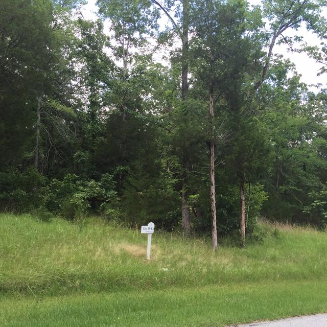 383 Abercrombie Point, Greenwood, SC 29649 (MLS #116390) :: Premier Properties Real Estate