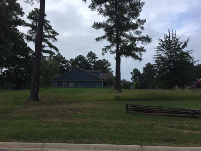 Lot 297 Links Crossing South, Ninety Six, SC 29666 (MLS #116447) :: Premier Properties Real Estate