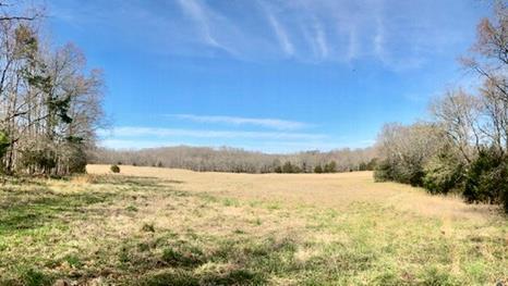 00 Mud Creek, Calhoun Falls, SC 29628 (MLS #116882) :: Premier Properties Real Estate