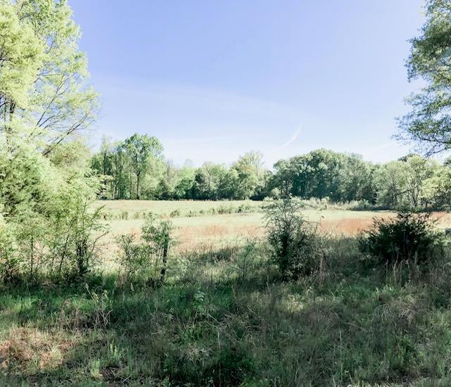 0 Mud Creek, Calhoun Falls, SC 29698 (MLS #117206) :: Premier Properties Real Estate