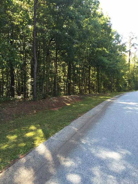 000 Commonwealth Drive, Ninety Six, SC 29666 (MLS #117535) :: Premier Properties Real Estate