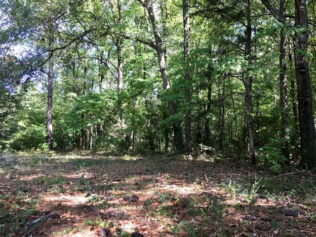 6 Timberland Trails, Abbeville, SC 29620 (MLS #103491) :: Premier Properties Real Estate