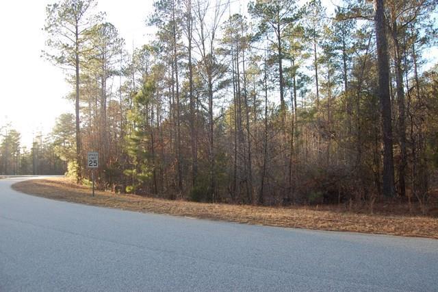 0000 Drayton Way, Hodges, SC 29653 (MLS #114926) :: Premier Properties Real Estate