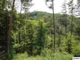Lot 175E Jones Creek Lane - Photo 1