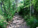 Parcels 3 & 4 Obes Branch Road - Photo 1