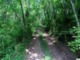 Parcels 3 & 4 Obes Branch Road - Photo 4