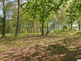 Lot 25 Willmore Drive - Photo 12