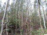 Trct 9-12 Boone Acres Lane - Photo 2