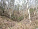 Trct 9-12 Boone Acres Lane - Photo 4