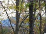 Lots 2,3,4 Scenic Trail - Photo 14