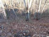 Lots 2,3,4 Scenic Trail - Photo 17