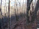 Lots 2,3,4 Scenic Trail - Photo 22