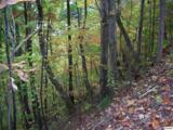 Lots 2,3,4 Scenic Trail - Photo 4