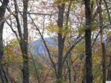 Lots 2,3,4 Scenic Trail - Photo 9