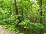 Lot 11 Overholt Trail - Photo 1