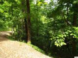Lot 11 Overholt Trail - Photo 10