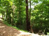 Lot 11 Overholt Trail - Photo 11