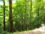 Lot 11 Overholt Trail - Photo 12
