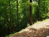 Lot 11 Overholt Trail - Photo 14