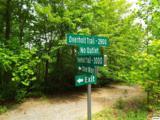 Lot 11 Overholt Trail - Photo 17