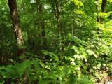 Lot 11 Overholt Trail - Photo 5