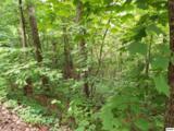 Lot 11 Overholt Trail - Photo 6