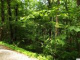 Lot 11 Overholt Trail - Photo 7