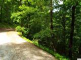 Lot 11 Overholt Trail - Photo 9
