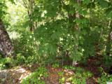 Lot 0011 Wildcat Ridge Road - Photo 1