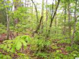 1 acre Pine Mountain Rd. - Photo 5
