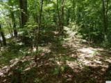 5.69 Acres Pea Hollow Rd. - Photo 1