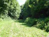 5.69 Acres Pea Hollow Rd. - Photo 20