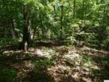 5.69 Acres Pea Hollow Rd. - Photo 4