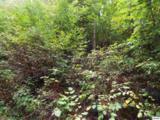 Parcel 053.00 Moosewood Spring Way - Photo 6