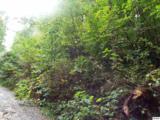 Parcel 053.00 Moosewood Spring Way - Photo 7