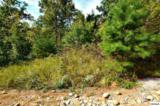 Lot 125 Brook View Trail - Photo 4