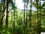716 Tanasi Trail - Photo 1
