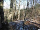 Lot 2 Scenic Woods Way - Photo 2