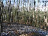 Lot 2 Scenic Woods Way - Photo 3