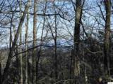 Lot 2 Scenic Woods Way - Photo 4