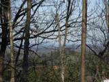 Lot 2 Scenic Woods Way - Photo 5