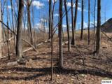 Lot 26 Deer Path Lane - Photo 1
