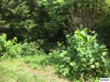 Lot 11 Buck Horn Rd - Photo 5