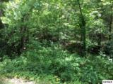 Lot 11 Buck Horn Rd - Photo 6