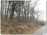 Lot 9 Pinto Ridge Drive - Photo 2
