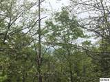 Lot 31 Laughing Pines Ln - Photo 10