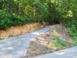 Greasy Cove Road - Photo 1
